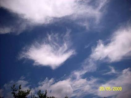 Angel Sightings Picture Cloud