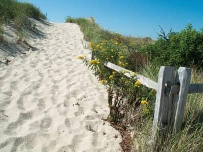 Boardwalks and Beach Carnivals