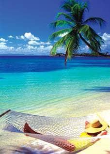 The Perfect Beach Trip