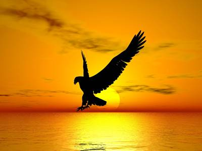 freedom, inspiration