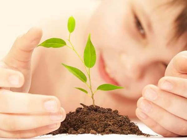 teaching patience - child watching a plant grow
