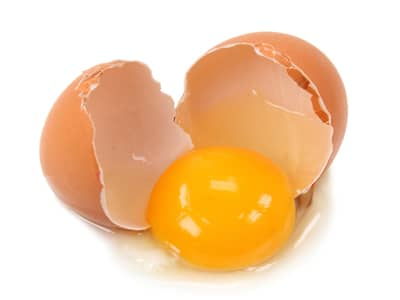 Brown Egg with Yolk