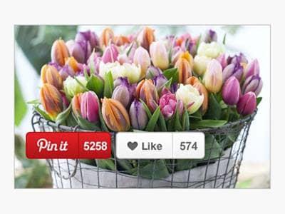 Tulips in Burlap