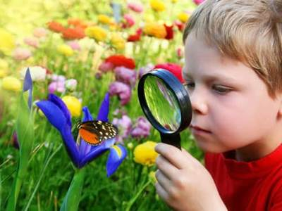boy and butterfly