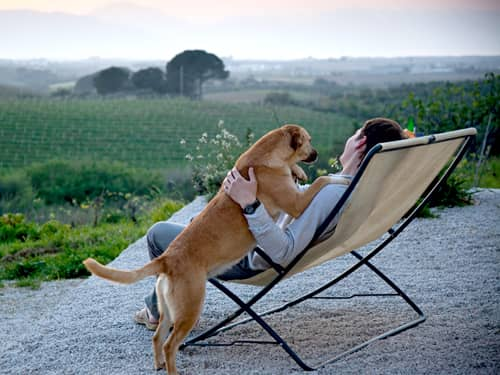 Man sitting with dog
