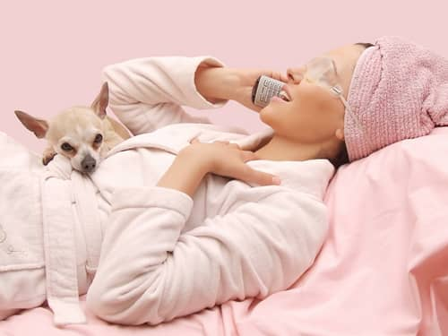 Woman talking on a cell phone with Chihuahua