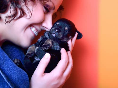 Woman and Terrier puppy