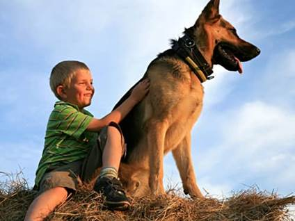 Boy and Alsatian dog sitting on a hill