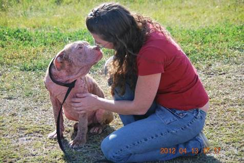 animal rescue, laura simpson, inspirational pet stories