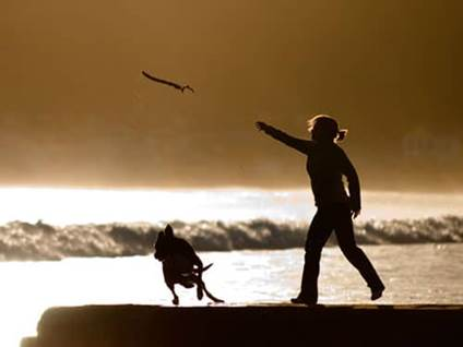 Woman playing catch with her dog on beach