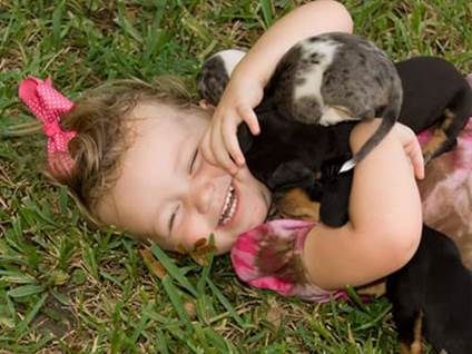 Little girl hugging Dachshund puppies