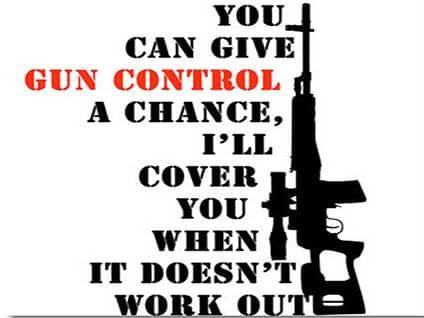 The Future of Gun Control