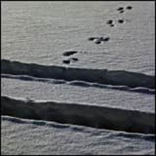 Dont Live in Denial snow footsteps