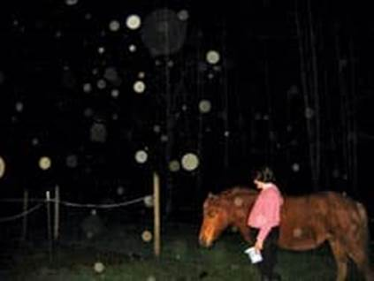 Orbs with horse