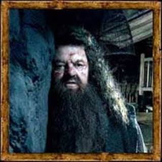 Will Hagrid Die?