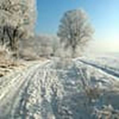Tip #1: Go for a Winter Walk