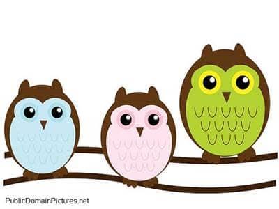 Cartoon of three owls