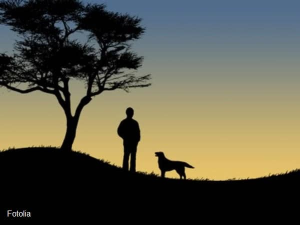 Silhouette of man and dog at sunset