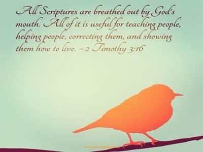 Image of: Strength Bible Quotes Nursebuff Prayables Bible Quotes Daily Prayers Daily Prayers For Living