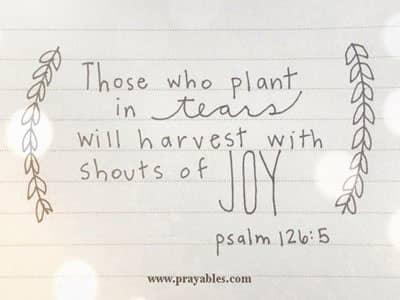 Prayables Bible Quotes Daily Prayers Tears And Joy From Psalms