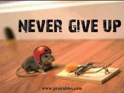 Funny Encouraging Quotes | Prayables Funny Inspirational Quotes Never Give Up Beliefnet